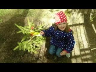 Выпускаемся в садике сегодня была посадка елочки! От нашей группы подарок для нашего любимого садика! УРА!!!