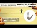 Оксана Зинченко - Социальные нормы как мозг представляет себе правила