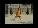 Funny videos - Shaolin kung fu small luohan 18 hands
