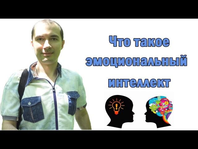 Что такое эмоциональный интеллект. Дмитрий Букин.