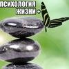 """ПСИХОЛОГИЯ ЖИЗНИ +"""