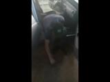 гога моет машину