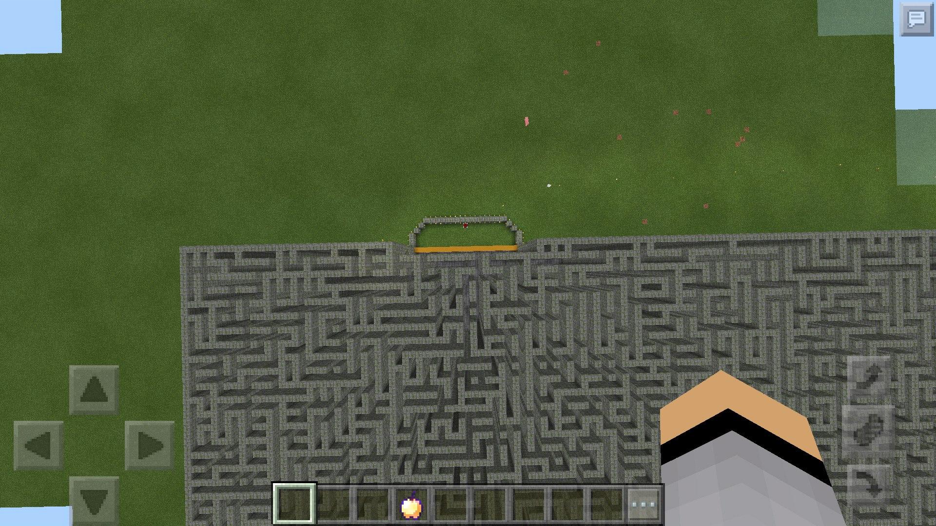 Лабиринт карта Huge Maze