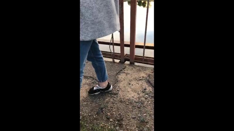 Жд мост) самоубийцы