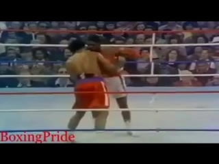 GEORGE FOREMAN VS RON LYLE (Brutal & Vicious Fight).