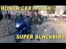 Докатились Honda CBR1100XX SUPER BLACKBIRD