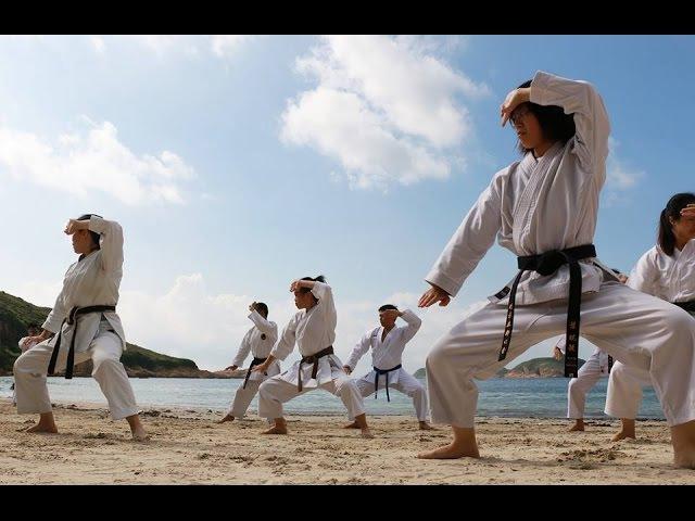 Goju Ryu basics
