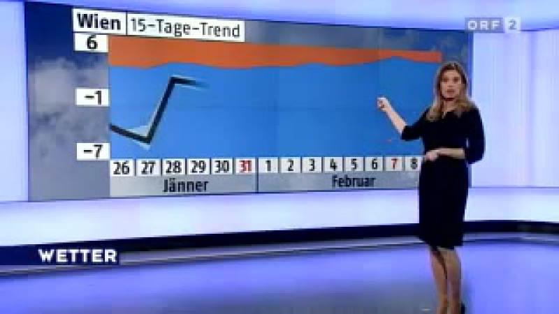 Фрагмент прогноза погоды (ORF 2 [Австрия], январь 2010)