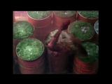 The Toxic Avenger (1984)  Trailer