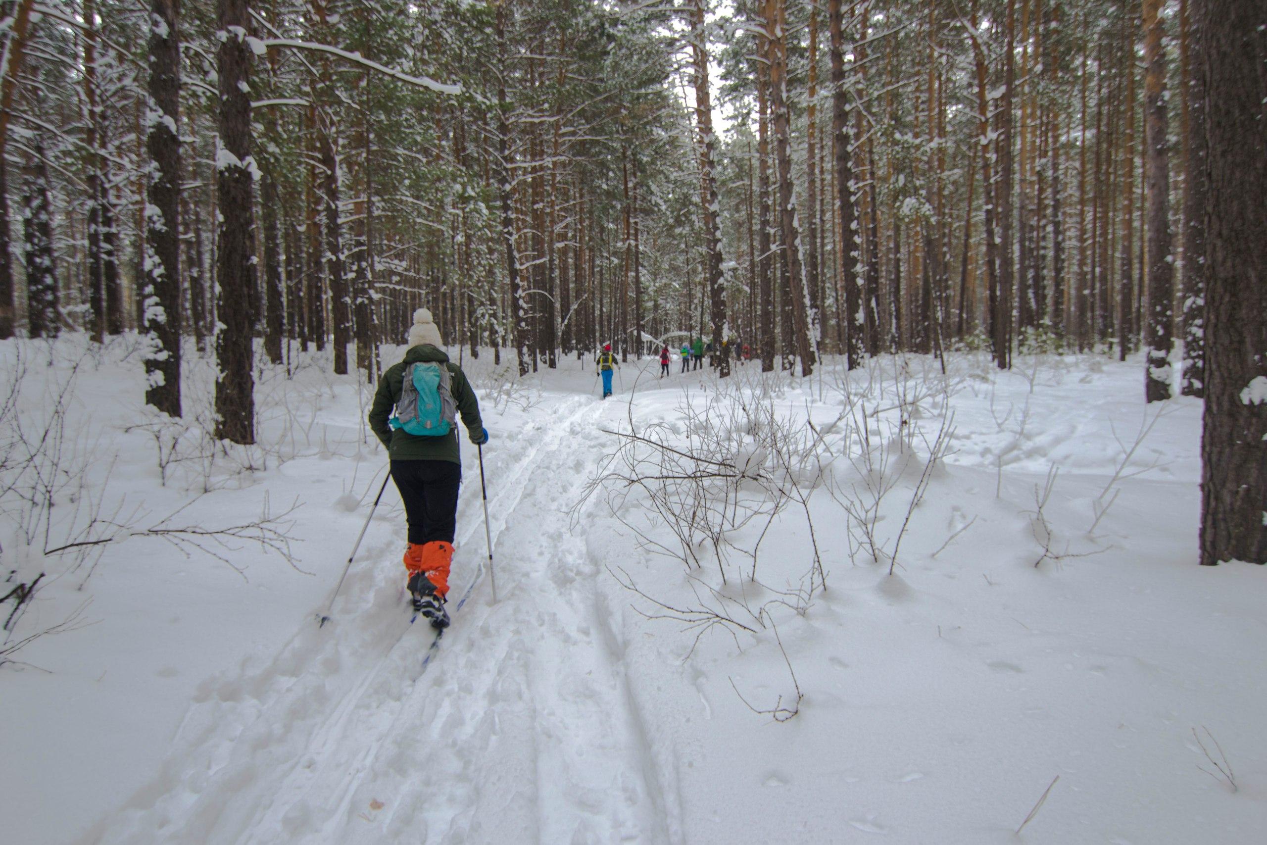 Лыжный поход Барнаул