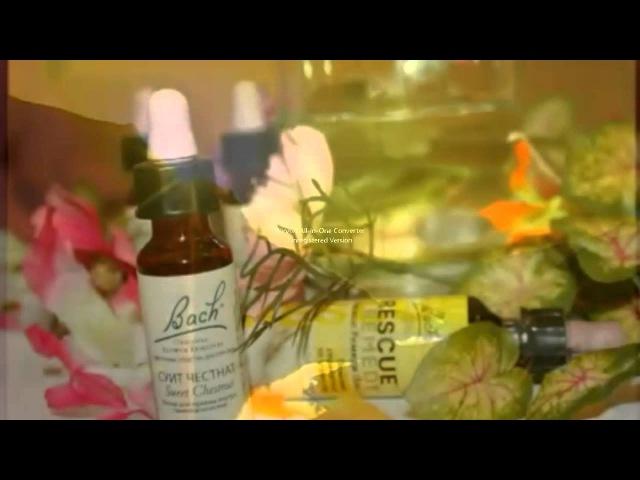 Цветы Баха - Лечение души