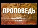 Дмитрий Розен - Воскрешая сокровища мертвых