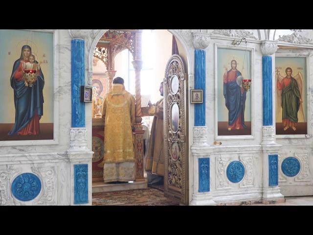 Диаконская хиротония о. Димитрия Селивановского