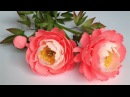 ABC TV How To Make Coral Charm Peony Paper Flower From Crepe Paper Craft Tutorial