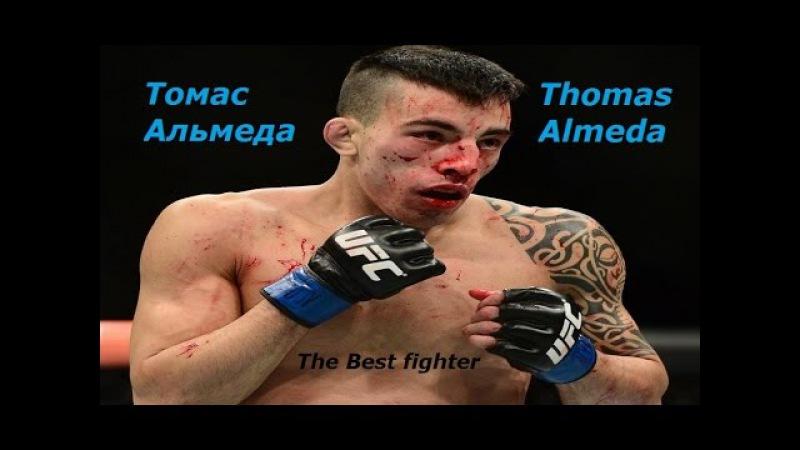 Лучший боец Томас Альмеда Подборка лучших моментов боев The Best fighter Thomas Almeda
