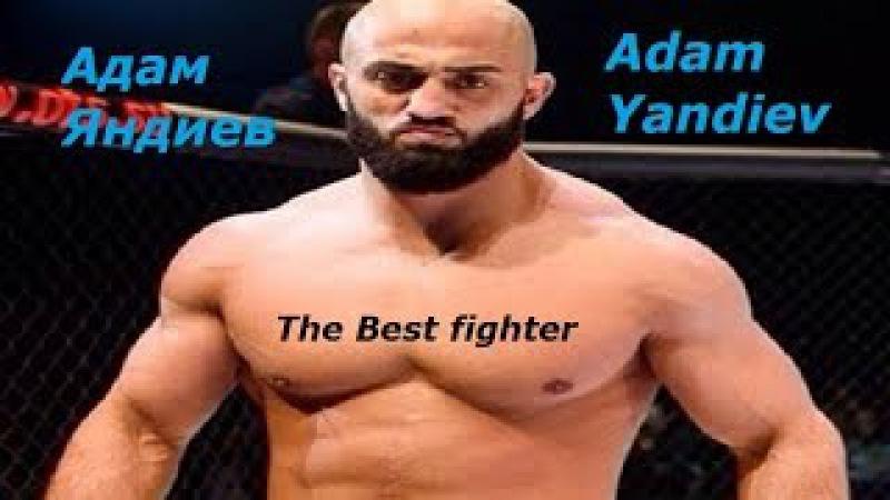 Лучший боец Адам Яндиев Подборка лучших моментов боев The Best fighter Adam Yandiev