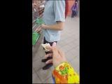 __n_i_k_o_l_a_s__ video