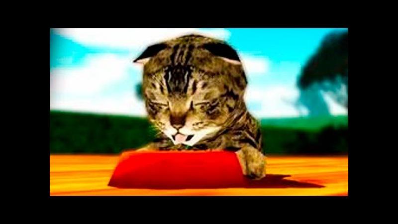 Играем в СИМУЛЯТОР КОШКИ 2 приключение мульт игр про котят развлекательное виде...