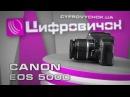 Видеообзор Canon EOS 500D
