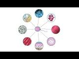 6. Процессы в клетке 5 класс - введение в Биологию