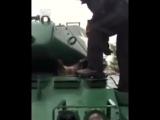 Енот застрял в танке
