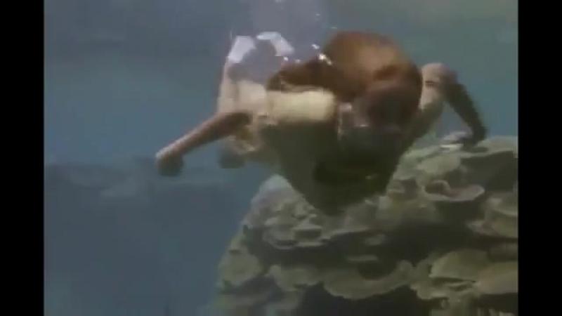 Ocean girl - Девочка из океана