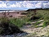 Nature - Chill Out - Beach - VARGO
