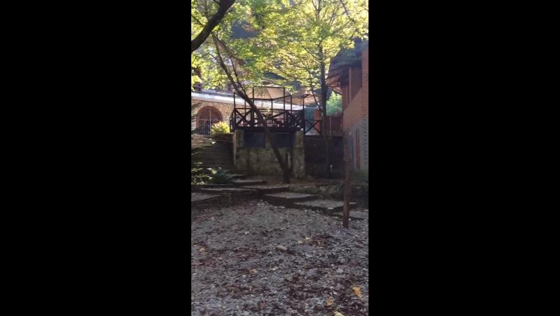 Домик лесника в поселке Ольгинка