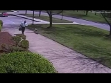 Guard goose attacks police officer