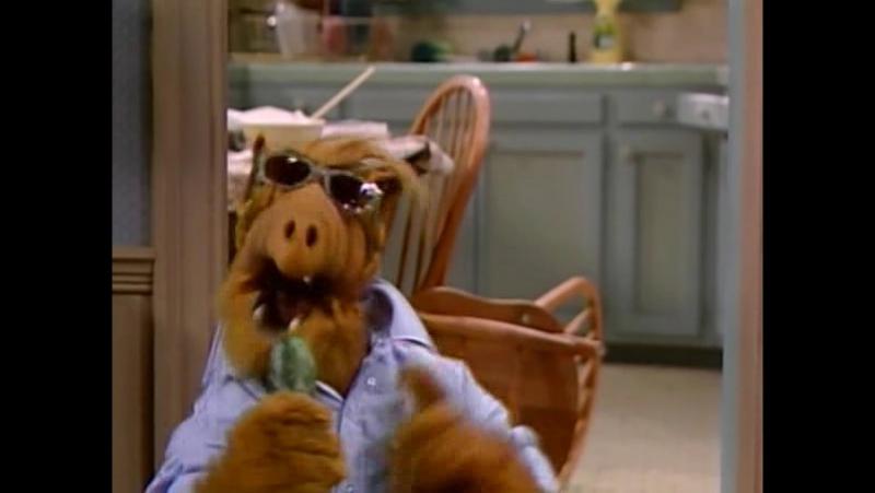 Alf Quote Season 1 Episode 3_Альф поет