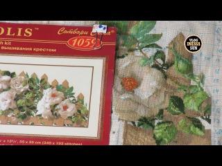 Белые розы от Риолис ( СП Роза - королева цветов. Отчет 1)