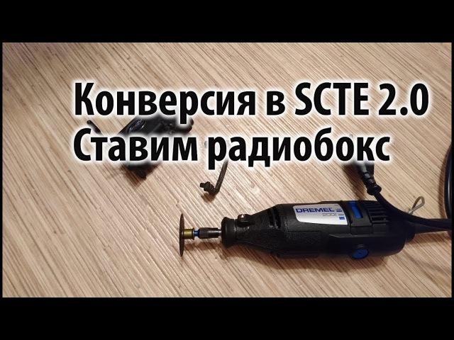 Установка радиобокса на Losi SCTE 2.0