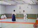 Kawahara Shihan Feb 1992 yokomen uchi koshinage