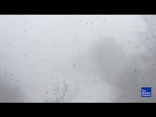 Снежна гроза в Осуиго (Нью-Йорк. США 3.03.2017)