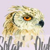 Solar_owl. Акварель / Открытки