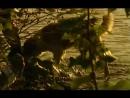 21 Белая Смерть Золотой Мальчик Документальный Сериал Народные средства от запоя