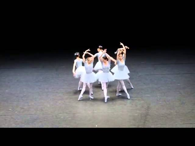 Смешной балет показали балерины Венской Государственной Оперы
