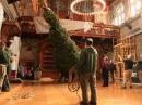 Biltmore Tree Raising, Nov. 5, 2014