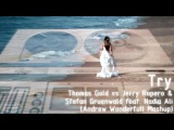 Thomas Gold vs Jerry Ropero &amp Stefan Gruenwald feat. Nadia Ali - Try (Andrew Wonderfull Mashup)