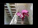 8 этаж Пони страшилка Pony Creator
