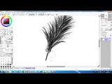 Набросок пераТестирую графический планшет Sketch of featherTesting Tablet pen