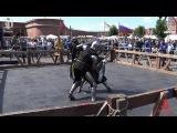 Russia St Petersburg Battle on the Neva 2017 Кубок Донжона 1vs1 25fight Мещерякова vs Фёдорова