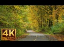4K (Ultra HD) Relaxation Video - URBAN AUTUMN - Nature Relaxation Footage with Piano Music - 2 Hours