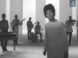 Аида Ведищева - Лесной олень (1972)