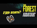 The Forest - Где найти акваланг!