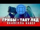Грибы - Тает Лёд (acapella cover by Женя Белозеров)