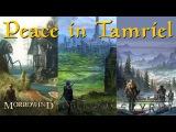 The Elder Scrolls Morrowind, Oblivion &amp Skyrim Music Compilation