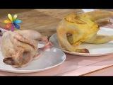 Как выбрать домашнюю курицу  Все буде добре. Выпуск 1001 от 17.04.17