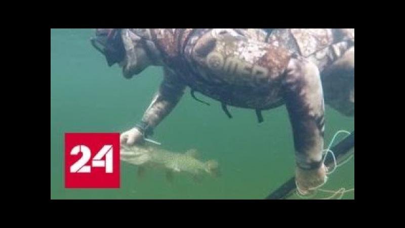 Три дня в Сибири: Путин купался, загорал, ходил по горным рекам и рыбачил