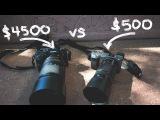 Sony a6000 vs Sony a9: Is it even fair? (Sony 55-210mm f4.5-6.3 vs Sony 70-300mm f4.5-5.6)